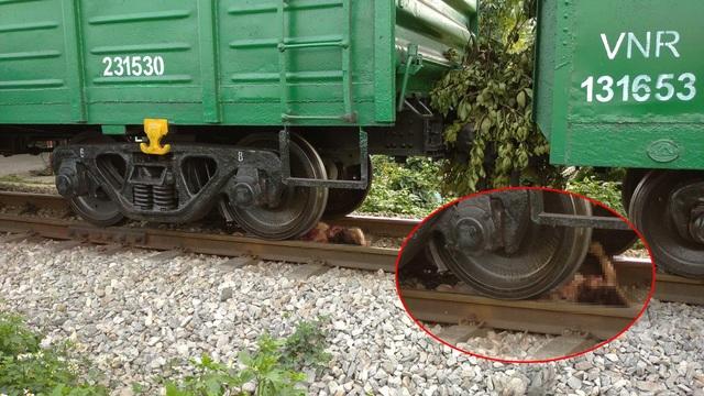 Lao vào đoàn tàu đang chạy, cô gái trẻ bị cán nát chân tay - 1
