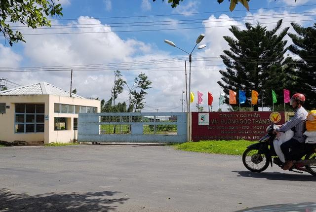 Công ty Mía đường Sóc Trăng thua kiện người lao động - 1