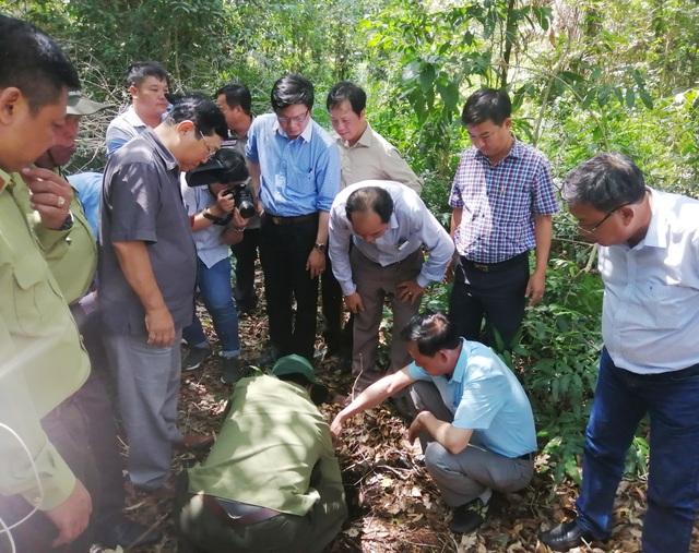 Giữ được hệ sinh thái đặc trưng thì mới còn là U Minh Hạ - 4