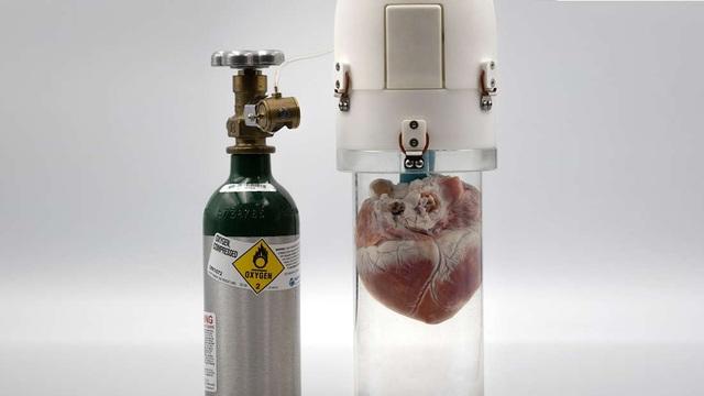 """Thiết bị mới giúp tim """"tươi"""" lâu hơn trước khi chờ cấy ghép - 1"""