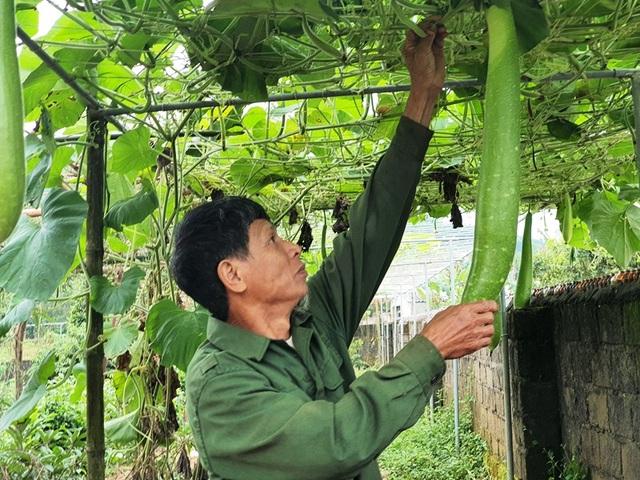 Shipper 0 đồng giúp giải cứu nông sản mùa dịch Covid-19 - 5