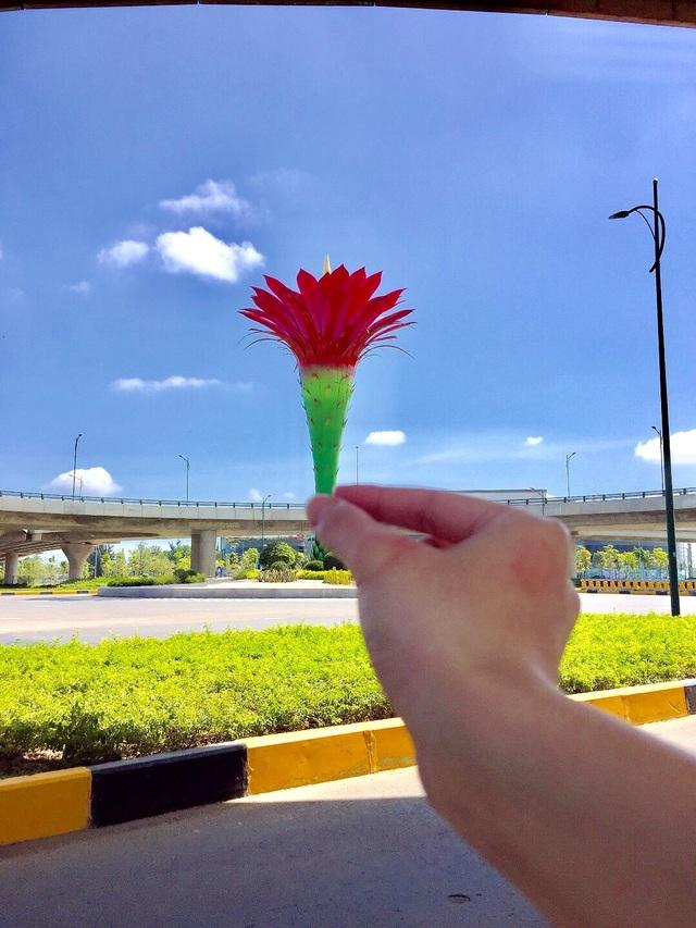 Giới trẻ thích thú check-in cầu vượt biểu tượng hoa xương rồng - 7