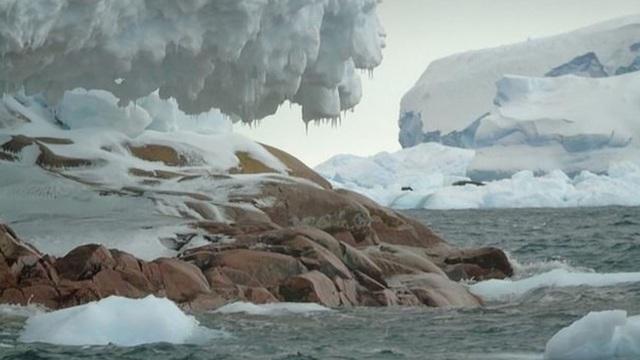 """Hòn đảo ở Nam Cực bất ngờ """"lộ diện"""" khi sông băng tan chảy - 1"""