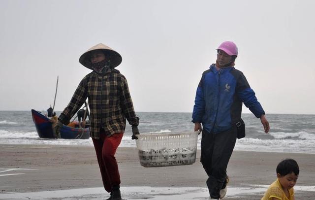 """Thanh Hoá: """"Hốt bạc"""" mùa cá trích ở Sầm Sơn - 5"""