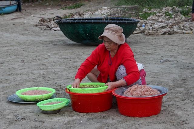 Ngư dân Đà Nẵng trúng đậm mùa ruốc biển - 8
