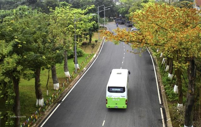 Không khí ô nhiễm, các nước trên thế giới xây dựng đô thị xanh như thế nào? - 5