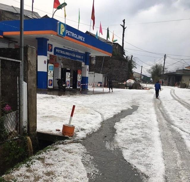 Mưa đá bất ngờ phủ trắng đường, sườn đồi ở Lai Châu - 4