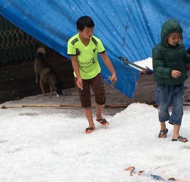 Mưa đá bất ngờ phủ trắng đường, sườn đồi ở Lai Châu - 5