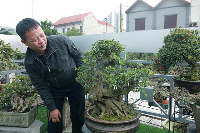Đầu tư 10 tỷ đồng chơi cây cảnh, đại gia Hà Nội đang có khối tài sản siêu khủng - 15