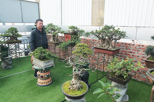 Đầu tư 10 tỷ đồng chơi cây cảnh, đại gia Hà Nội đang có khối tài sản siêu khủng - 4