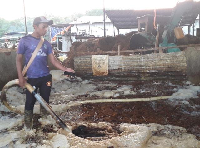 Cá chết trắng cạnh nhà máy giấy: Nước thải ô nhiễm nặng - 2