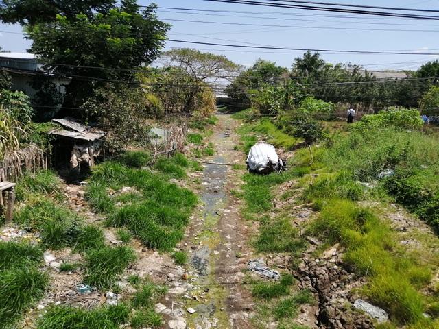 Cà Mau công bố tình huống khẩn cấp hạn hán tại vùng ngọt hóa - 2
