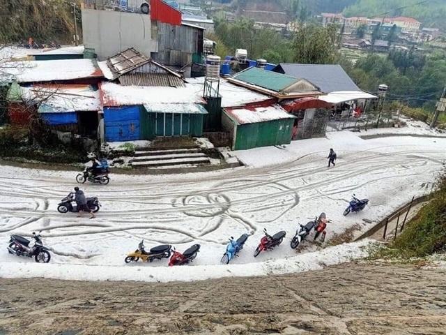 Mưa đá bất ngờ phủ trắng đường, sườn đồi ở Lai Châu - 1