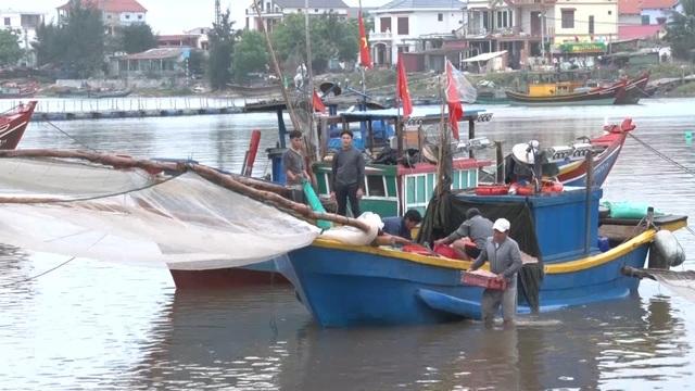 Trúng mẻ ruốc biển, ngư dân kiếm cả chục triệu đồng mỗi ngày - 2