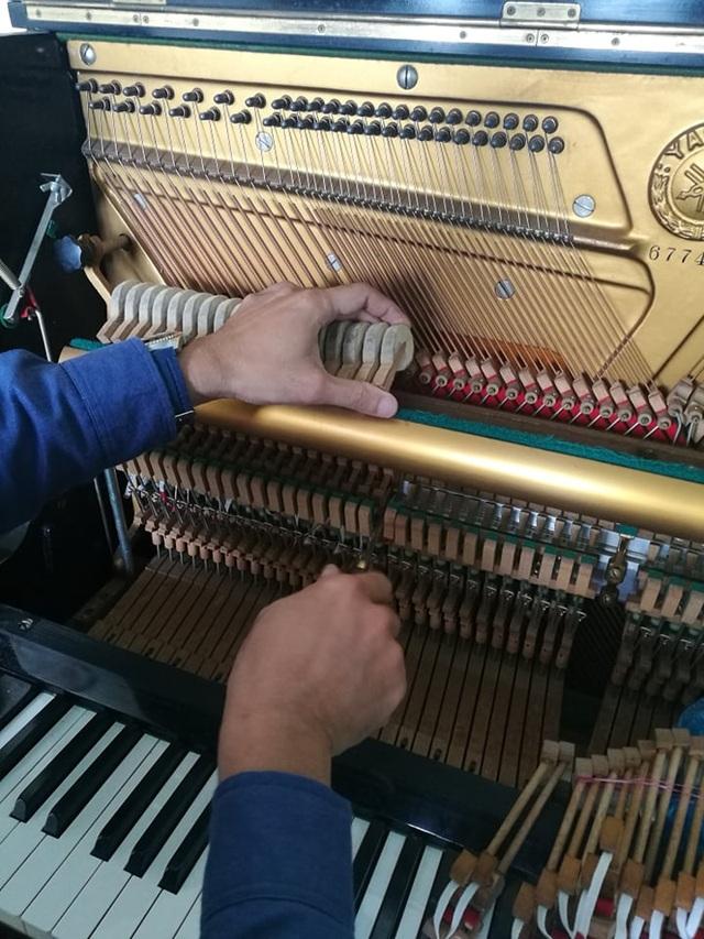 Thái Dũng: Người thổi hồn vào tiếng dương cầm - 2