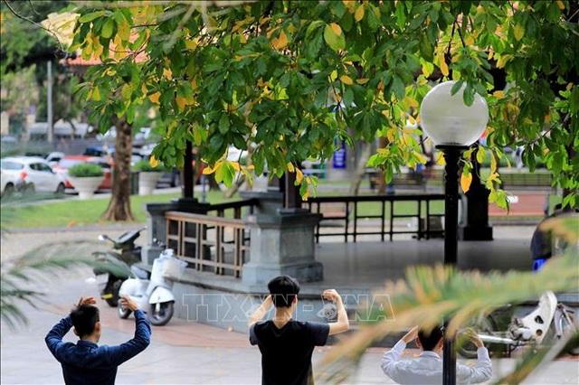 Hà Nội đẹp lạ lùng mùa cây thay lá - 12