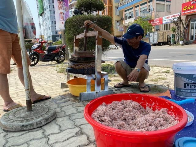 Trúng mẻ ruốc biển, ngư dân kiếm cả chục triệu đồng mỗi ngày - 10