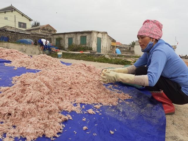 Trúng mẻ ruốc biển, ngư dân kiếm cả chục triệu đồng mỗi ngày - 8
