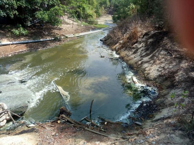 Hàng loạt hồ tôm ven biển gây ô nhiễm nghiêm trọng tại Quảng Bình - 3