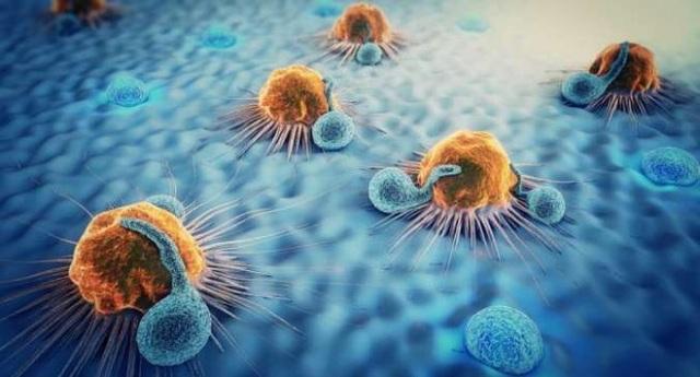 5 thắc mắc thường gặp về bệnh ung thư bạn cần biết - 1
