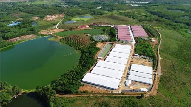 Lãnh đạo Sở TN-MT Phú Thọ khẳng định Dabaco bị phạt 300 triệu là đúng - 1