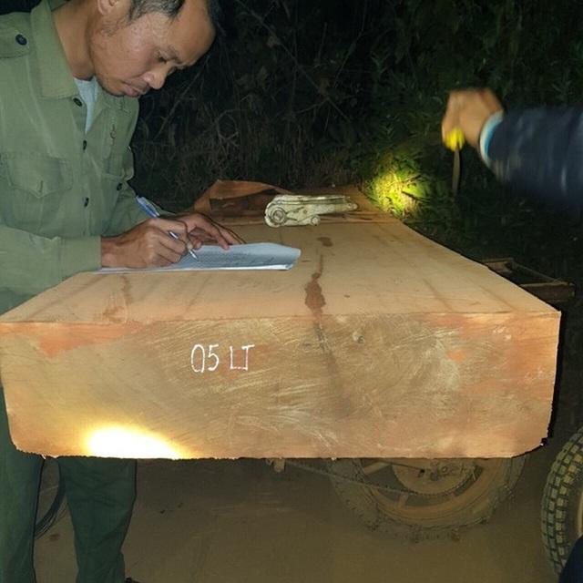 """Tiếp tục phát hiện đoàn lâm tặc """"lộng hành"""" vận chuyển gỗ trong đêm - 1"""