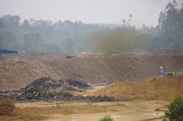 Cận cảnh nhà máy chế biến gỗ ngày đêm hành hạ người dân tại Phú Thọ - 6