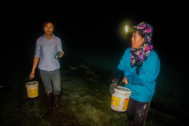 Theo chân người dân đi săn cua đồng đêm  - 2