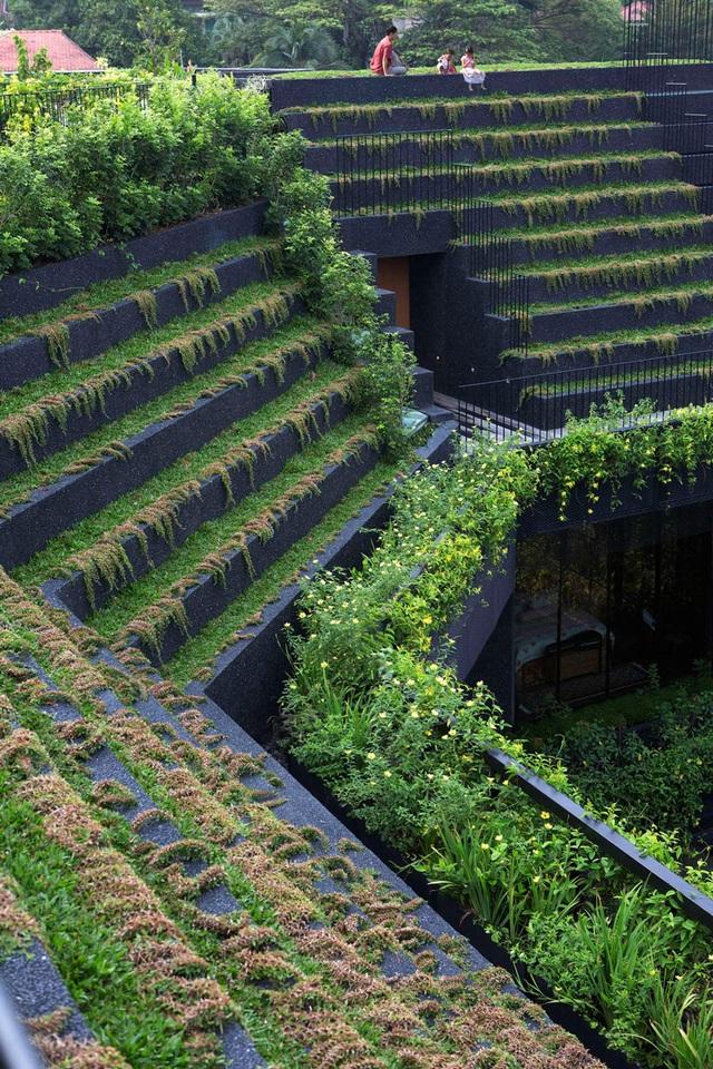 """Sửng sốt với """"khu vườn nhiệt đới"""" ngay trên nóc nhà biệt thự ở Singapore - 3"""