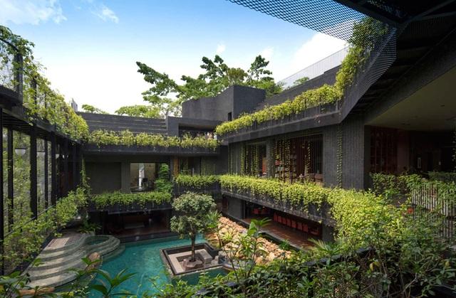 """Sửng sốt với """"khu vườn nhiệt đới"""" ngay trên nóc nhà biệt thự ở Singapore - 4"""