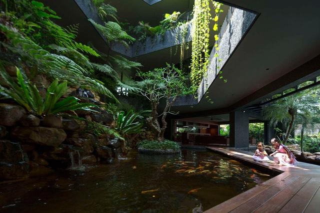 """Sửng sốt với """"khu vườn nhiệt đới"""" ngay trên nóc nhà biệt thự ở Singapore - 5"""