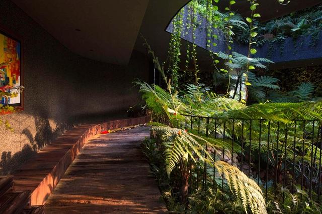 """Sửng sốt với """"khu vườn nhiệt đới"""" ngay trên nóc nhà biệt thự ở Singapore - 10"""