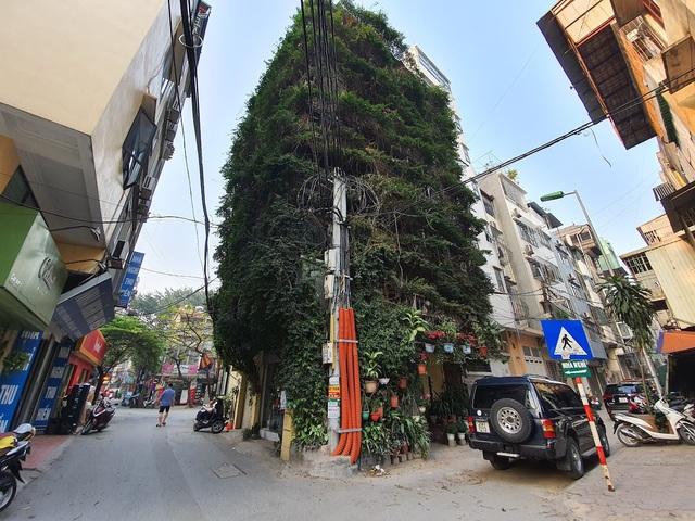 Nhà cây 5 tầng phủ kín hoa giấy ở Hà Nội, ai đi qua cũng dừng lại ngắm - 1