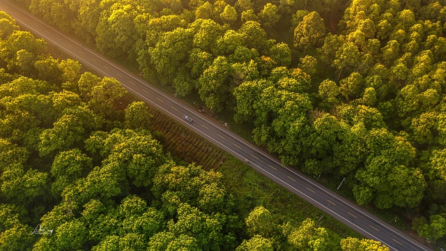 Dịch Covid – 19 tăng thêm dòng dịch chuyển BĐS về các đô thị xanh - 2