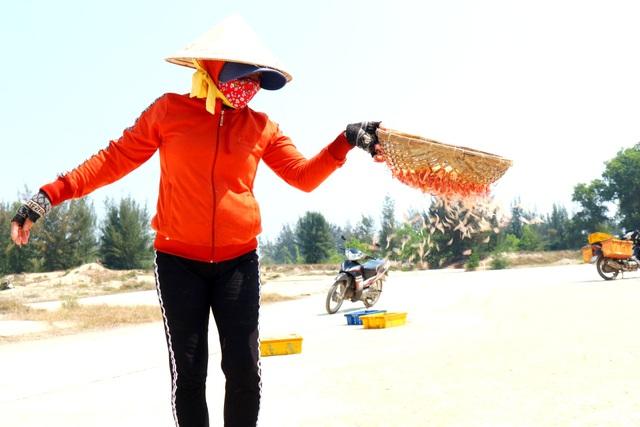 Ngư dân Quảng Nam trúng mùa ruốc biển - 10