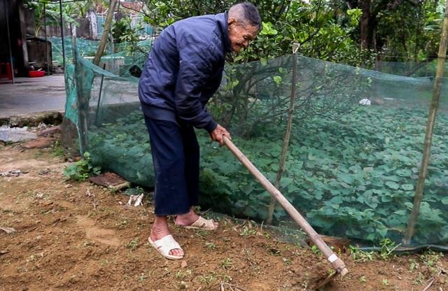 Cụ ông 107 tuổi ngày ngày cuốc đất trồng rau, viết chữ làm thơ - 3