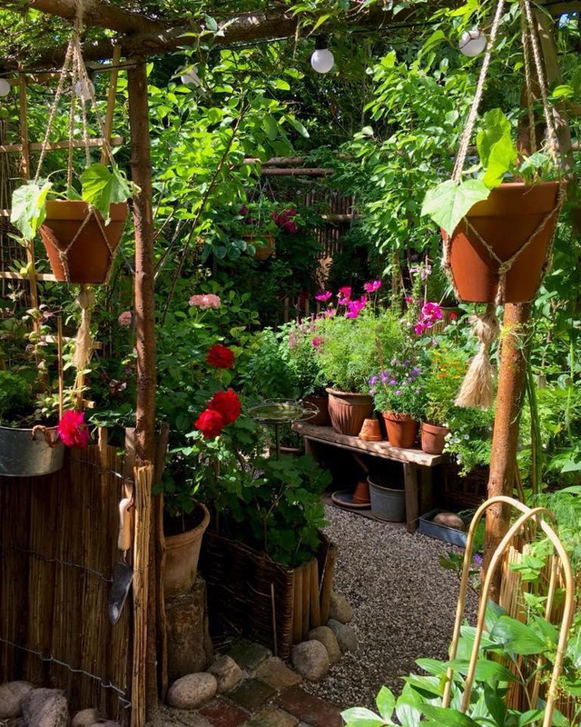 """Ngắm vườn cây đủ hoa trái gây """"sốt"""" của nhà thiết kế thời trang ở Đan Mạch - 3"""