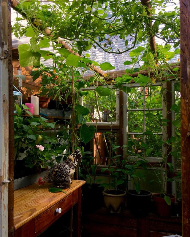 """Ngắm vườn cây đủ hoa trái gây """"sốt"""" của nhà thiết kế thời trang ở Đan Mạch - 7"""