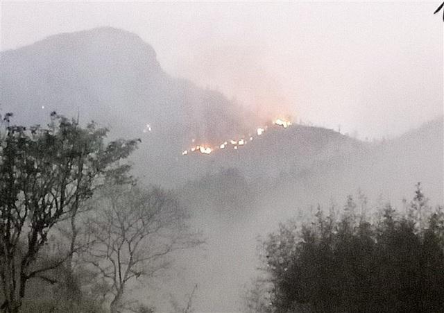 Hơn 300 người dập lửa cứu rừng trong đêm - 1