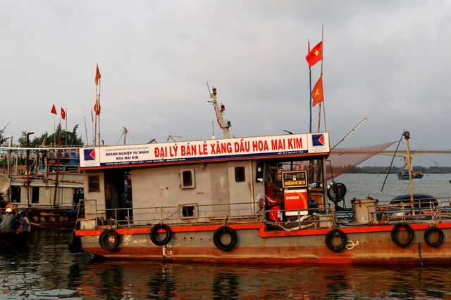 Ngư dân Quảng Nam được mùa cá cơm - 11