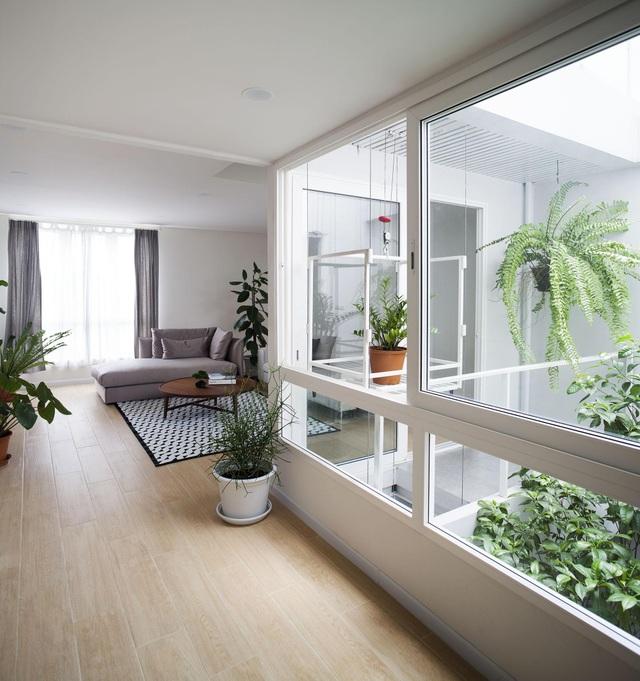 """Choáng ngợp ngôi nhà 300m2 với khu vườn bonsai toàn cây """"khủng"""" - 6"""