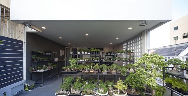 """Choáng ngợp ngôi nhà 300m2 với khu vườn bonsai toàn cây """"khủng"""" - 9"""