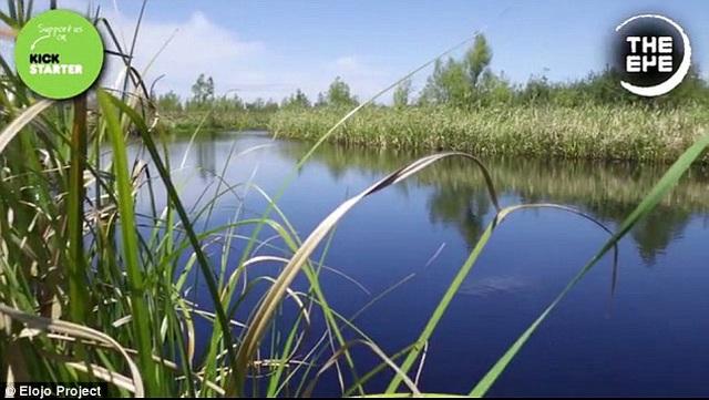 Hòn đảo kỳ bí liên tục di chuyển trong lòng hồ suốt 20 năm - 3