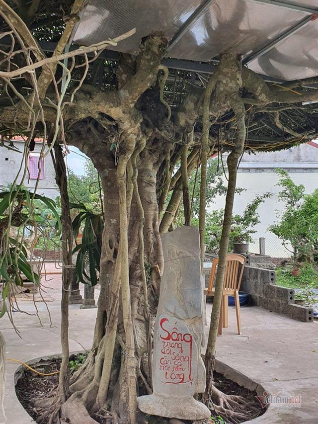 Siêu cây mái đình làng cổ độc số 1 Bắc Bộ - 9