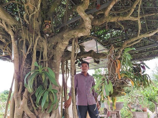 Siêu cây mái đình làng cổ độc nhất Bắc Bộ - 12