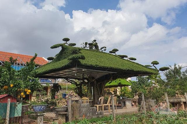Siêu cây mái đình làng cổ độc số 1 Bắc Bộ - 1