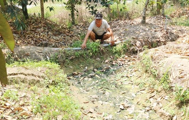Hạn mặn khốc liệt, tìm cách cứu vườn sầu riêng của người dân - 7