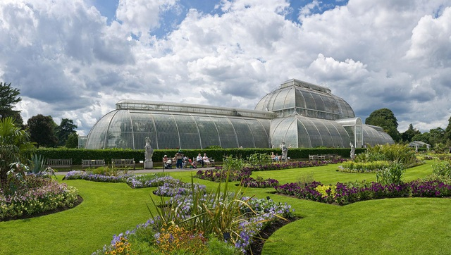 Lạc bước vào khu vườn di sản với hàng nghìn loại cây hoa độc lạ ở Anh - 1