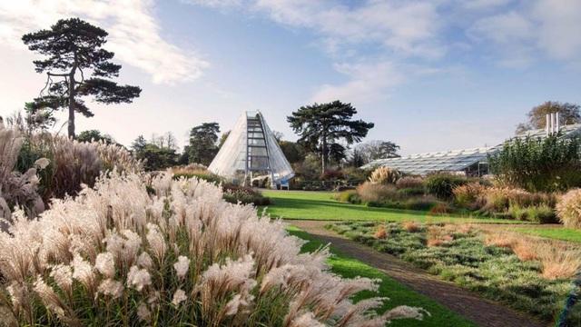 Lạc bước vào khu vườn di sản với hàng nghìn loại cây hoa độc lạ ở Anh - 4