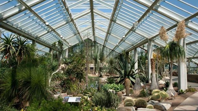 Lạc bước vào khu vườn di sản với hàng nghìn loại cây hoa độc lạ ở Anh - 5